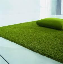 Green Grass Rug Home Design Ideas and