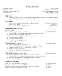 Objective For Resume High School Student Examples