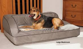 drs foster smith luxury chaise lounge dog bed