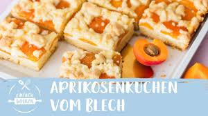 aprikosenkuchen vom blech i einfach backen