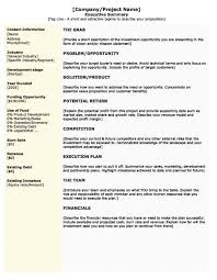 Business Plan Summary Examples Description Example Executive Startup