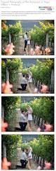 Stanly Lane Pumpkin Patch Napa 2015 by 57 Best Napa Valley Trips Images On Pinterest Bistros Books And