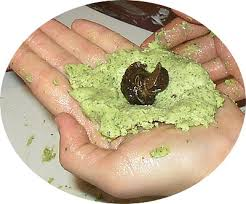 cuisiner les escargots de bourgogne recette avec des escargots gastronomie recettes de cuisine et