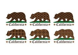 Patterned California Bear Vector Image Free Download
