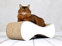 design cat scratcher le ver cat on ecofriendly cat furniture