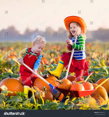 Marana Pumpkin Patch Field Trip by 100 Halloween Pumpkin Picking The Master Guide To Pumpkin