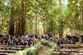 Forest Wedding Under Large Redwood Trees