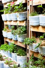 Don's Tips: Vertical Gardens - Burke's Backyard Dons Tips Vertical Gardens Burkes Backyard Depiction Of Best Indoor Plant From Home And Garden Diyvertical Gardening Ideas Herb Planter The Green Head Vertical Gardening Auntie Dogmas Spot Plants Apartment Therapy Rainforest Make A Cheap Suet Cedar Discovery Ezgro Hydroponic Container Kits Inhabitat Design Innovation Amazoncom Vegetable Tower Outdoor