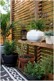 This Image With Appealing Diy Outdoor Privacy Screen Ideas ... Backyard Privacy Screen Outdoors Pinterest Patio Ideas Florida Glass Screens Sale Home Outdoor Decoration Triyaecom Design For Various Design Bamboo Geek As A Privacy Screen In Joes Backyard The Best Pergola Awesome Fencing Creative Fence Image On Cool Garden With Ideas How To Build Youtube