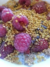 Pumpkin Seeds Low Glycemic Index by Pumpkin Seeds Raw Food Recipes Etc