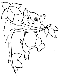 Kitten In Tree Image For Coloring