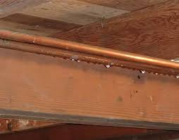 And Cold Water Pipes Photo by Should I Insulate My Cold Water Pipes Greenbuildingadvisor