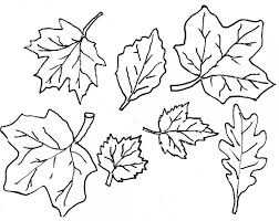 6 images of autumn leaf outline printable fall clipart