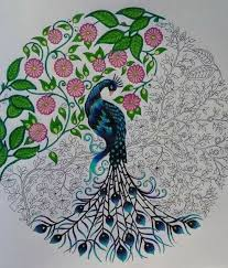 Peacock Secret Garden Pavao Jardim Secreto Johanna Basford