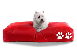 Petzy Premium Pet Accessories Worldwide Shipping Bean Bag