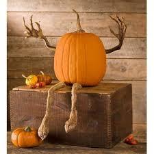 Grims Greenhouse Pumpkin Patch by Brown Outdoor Halloween Decorations You U0027ll Love Wayfair