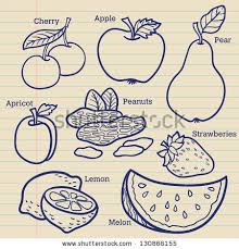 Set of fruits For menu Hand drawing retro Healthy food Isolated