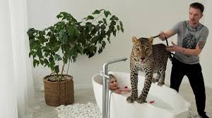 wildes wohnzimmer russen kuscheln mit leoparden zdfheute