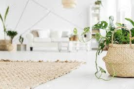 wicker teppich und blumentopf mit pflanze in gemütlichen weißen wohnzimmer