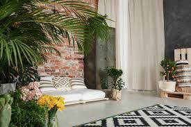 sind pflanzen im wohnzimmer noch trend nahgemacht de