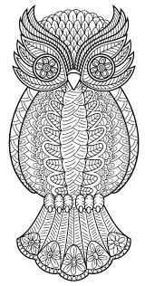 Coloring Adults Adult Pages Owl For To Print Cute Full Size