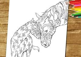 Coloring Book Page For Adults Horse Foal
