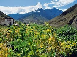 The Hermitage Spiti Himachal Pradesh