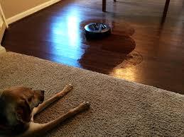 Roomba Hardwood Floor Mop by Scooba 450 Floor Mopping Robot Review