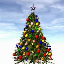 The Garden Plot GMGs Friday Find Pick Perfect Christmas Tree