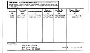 Pharma bro Martin Shkreli hit with $4 6M IRS tax lien