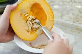 Unsalted Pumpkin Seeds Benefits by Unshelled Pumpkin Seeds Nutrition Nutrition Daily