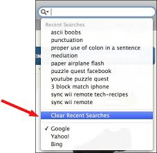 Safari How to Clear the Google Search Box History