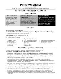Sample Resume For An Assistant IT Project Manager