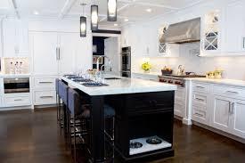 Kitchen Storage Ideas Pictures House Best Kitchen Storage Ideas Island Custom
