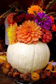 Carvable Craft Pumpkins Wholesale by 17 Best Halloween Images On Pinterest Flowers Halloween Flowers