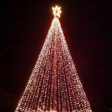 8 Best Christmas Lighting Images On Pinterest Ideas Of Flagpole Tree