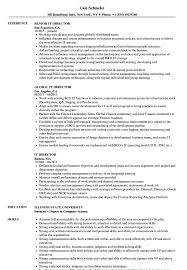 IT Director Resume Samples | Velvet Jobs It Consultant Resume Samples And Templates Visualcv Executive Sample Rumes Examples Best 10 Real It That Got People Hired At Advertising Marketing Professional Coolest By Who In 2018 Guide For 2019 Analyst Velvet Jobs The Anatomy Of A Really Good Rsum A Example System Administrator Sys Admin Sales Associate Created Pros How To Write College Student Resume With Examples