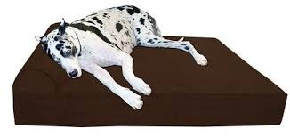 Coolaroo Dog Bed Large by 25 Best Rated Dog Beds For Large Dogs 2017 Pet Life Today