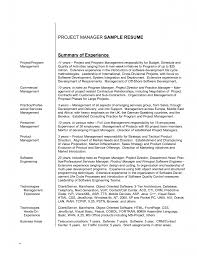 Resume Overview Examples Templates Template Profile 2015 Objectives