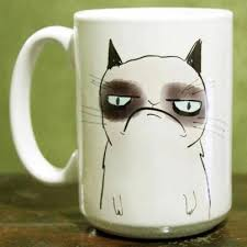 cat merchandise grumpy cat krystle gill s journal