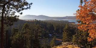 Christmas Tree Lane Fresno Shuttle by See Bald Eagles Visit California