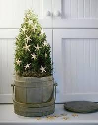 Plantable Christmas Trees Columbus Ohio by Deck The Halls At The Beach Christmas Tree Beach And Beach