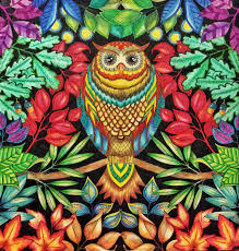 Derwent Coloursoft Pencils Staedler Fine Liners Uniball SIgno Secret Garden Coloring BookAdult