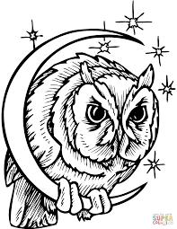 Owl In Crescent Moon