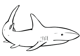 Octonauts Whale Shark Coloring Page Printable Pages Print White Scary Tale