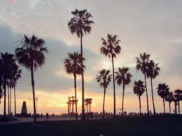 California Beach Tumblr Backgrounds Palm Trees Wallpaper Laguna Seaside Ocean Pacific Clouds