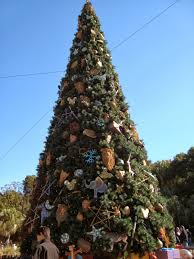 Mr Jingles Christmas Trees Hollywood by It U0027s A Disney World After All December 2013