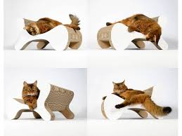 cat on molecular fauteuil purrfect design