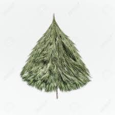 Christmas Tree Made With Cedar Branches On White Desk Background Top View Layout Of