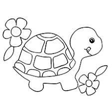Turtle With Flowers Side By